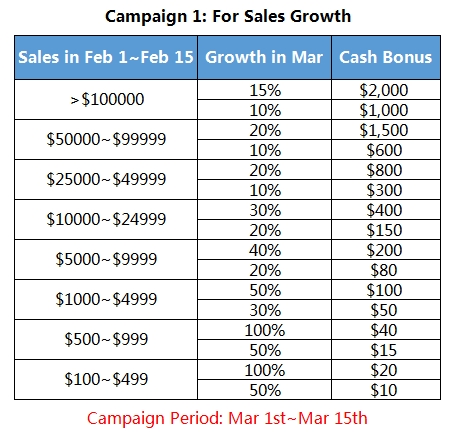sales campaign.jpg